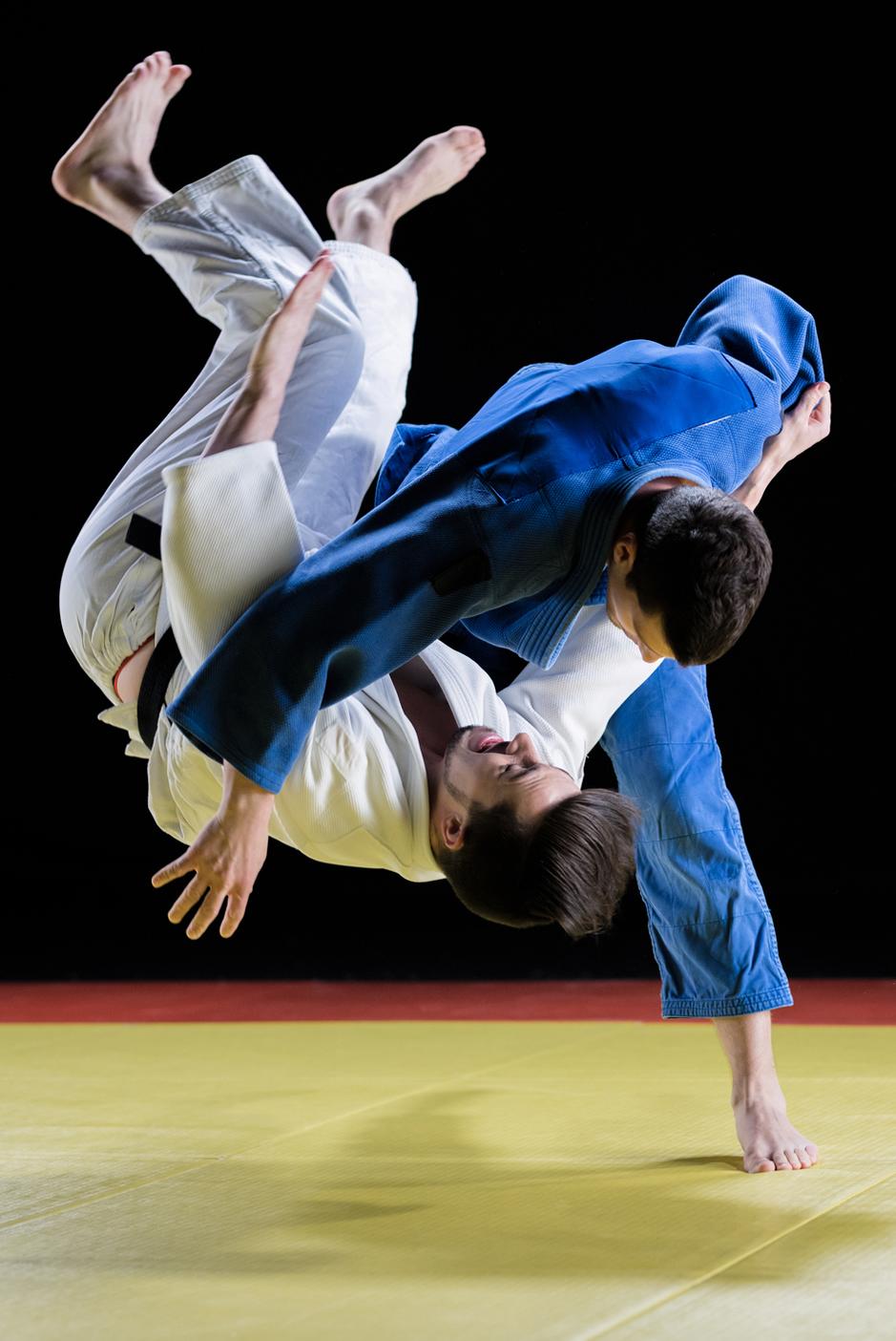 judo hanche